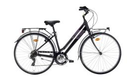 City Bike Montana Bluecity 28 Donna TY300 7v Revo