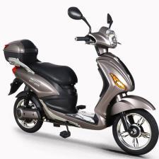 Scooter Elettrico NCX Lucky XD 250W Grigio